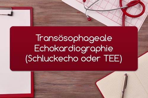 Transösophageale Echokardiographie Schluckecho TEE